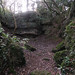 Another old quarry in Bathampton Woods