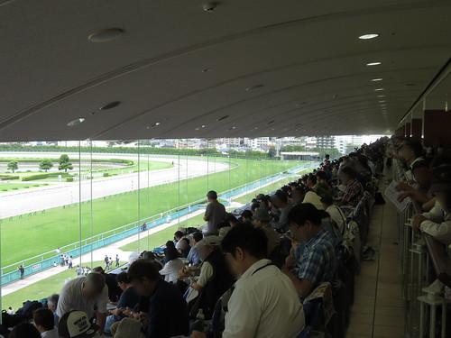 小倉競馬場の4階一般席