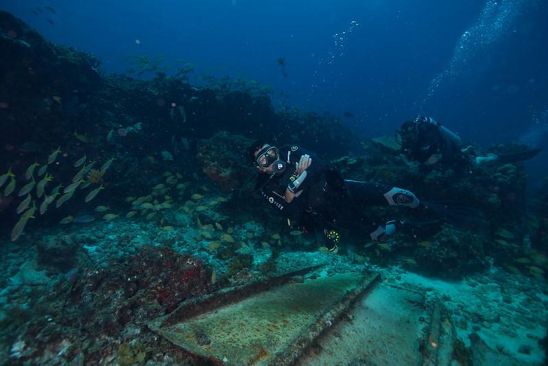 diving (47 de 77)