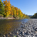 Autumn along the Snoqualmie River