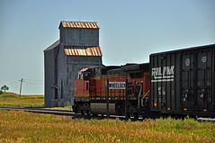 BNSF West Bound Manifest Train-Wheelock, North Dakota.