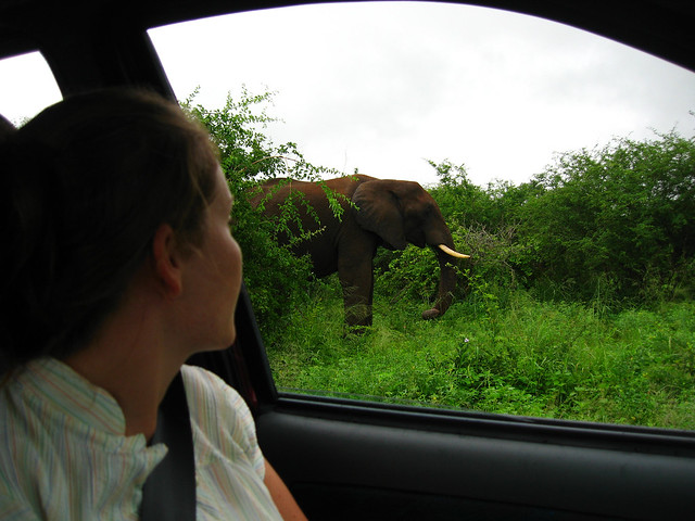 South Africa - 052