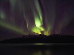 Aurora borealis-220056