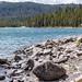 Lake Yellowstone shore
