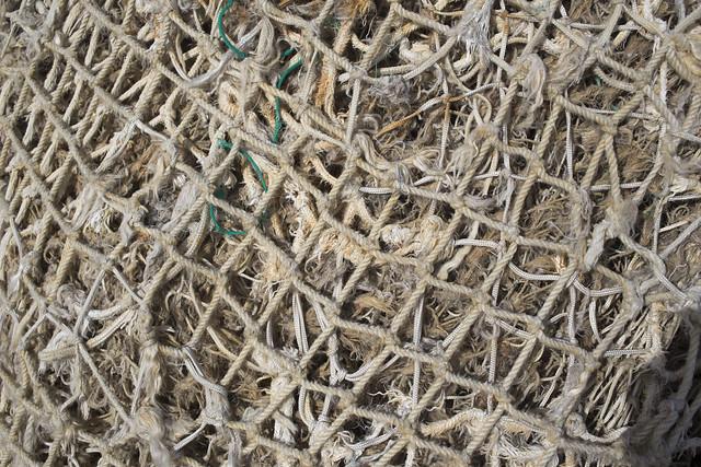 Layered Netting