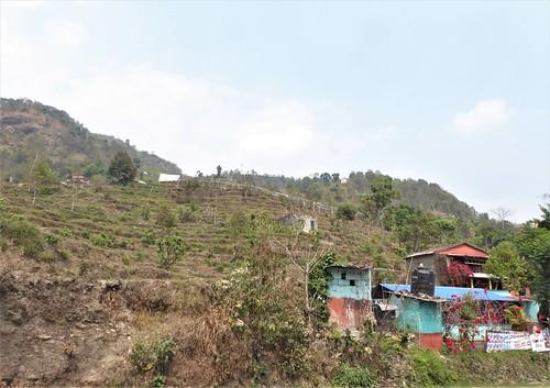 n-pokhara-Pagode-Paix-descente (9)