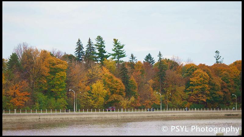Autumn colours along Rideau Canal