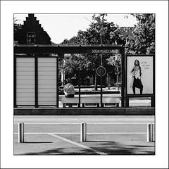Street Life #10 - Photo of Douai