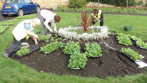 Planting Up Whickham Oct 17 (5)