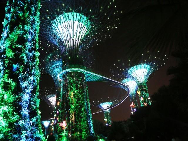 groove tree Gradini si Parcuri din Singapore 2