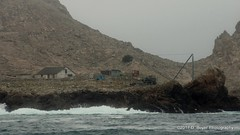Structures at the southeast Farallon Island