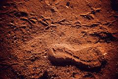 Life on Mars ;)