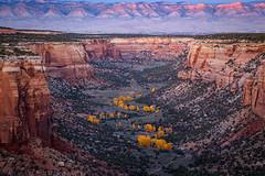 Ute Canyon Autumn (10-22-17)