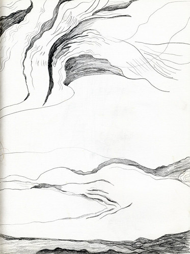 pencil sketch of driftwood on the beach