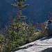 Small photo of Mt Willard
