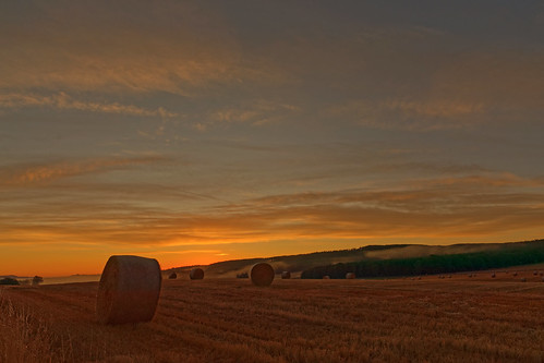 sunrise bales straw fields harvest sidlawhills strathmore angus mist cereal crops round circle farming eos1dxmk2 canon