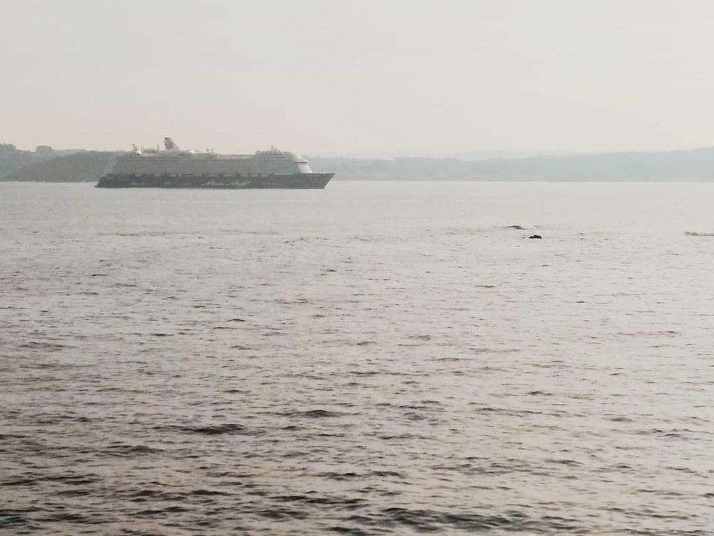 Vecinos por unas horas. #crucero #cruise #Coruña #otoño #photography #phonephoto #mar