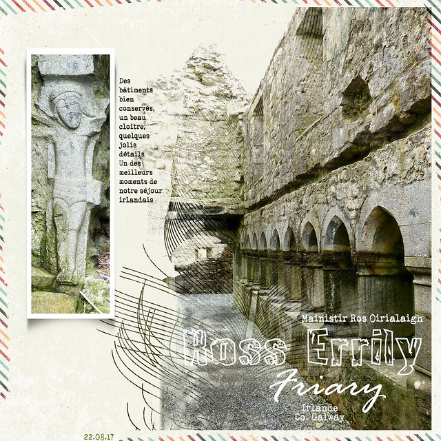 Irlande 11 - Ross abbey