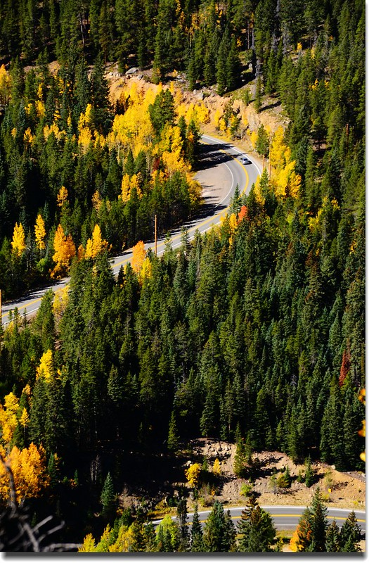 Fall colors, Mount Evans Scenic Byway, Colorado (35)