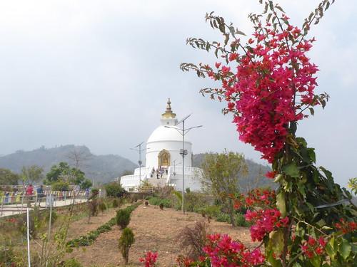 n-pokhara-Pagode-Paix (14)