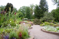 Brookside Gardens 8232017  (200)