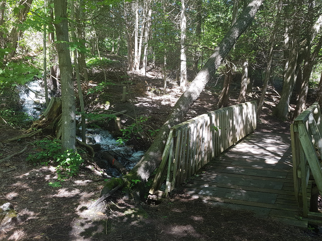 Belfountain Conservation Area
