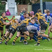 Sale's William Davies scores a typical forwards try, to take finish Hinckley off-9193