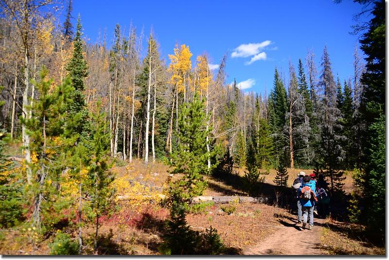 Gore Range Trail, Silverthorne (20)