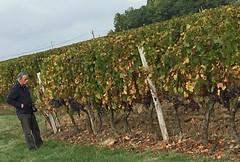 Pessac-sur-Dordogne