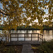 Red River State Recreation Area - Autumn Fishing Platform
