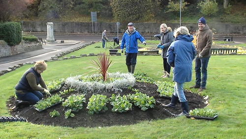 Planting Up Whickham Oct 17 (8)