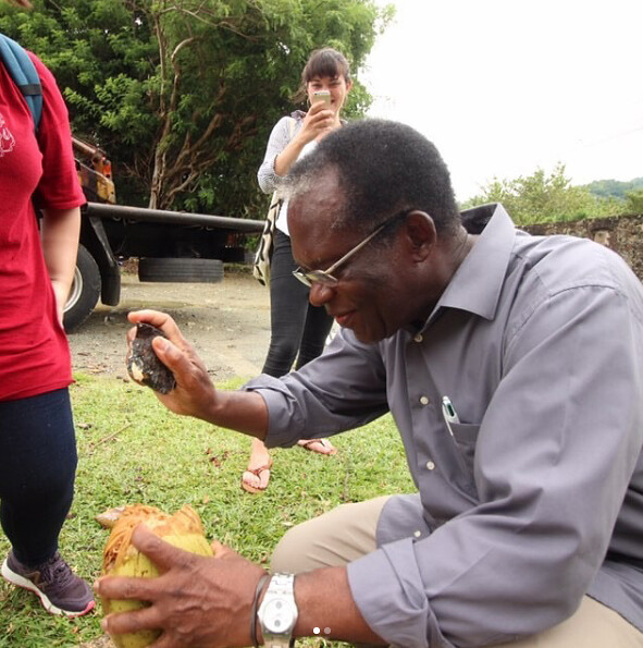 Professor Henry Richardson, architecture, opens a coconut during a class trip to Trinidad and Tobago with the option studio Cultural Tourism in Trinidad and Tobago: Promoting Carnival, Calypso, and Bond Culture in Crusoeland. photo / Amy Wood (B.Arch. '18)