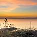 Solent Dawn