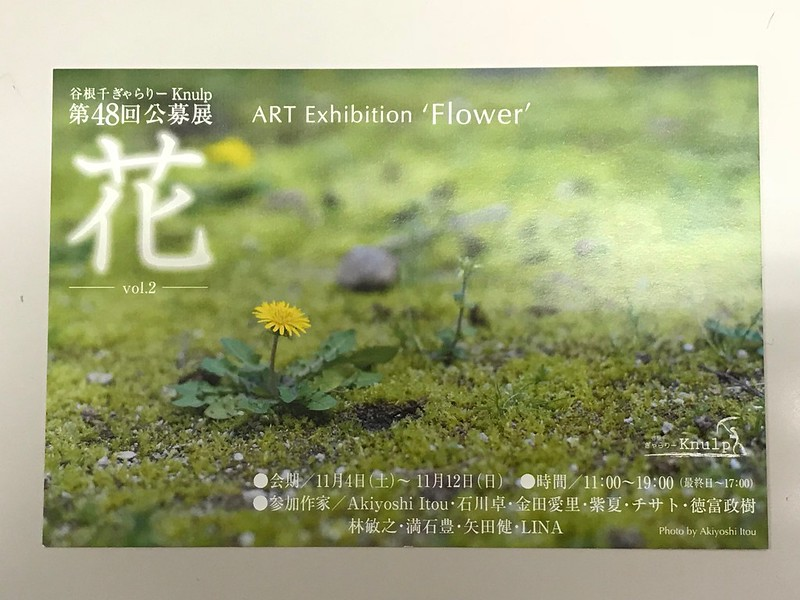 ギャラリーKnulp 花展