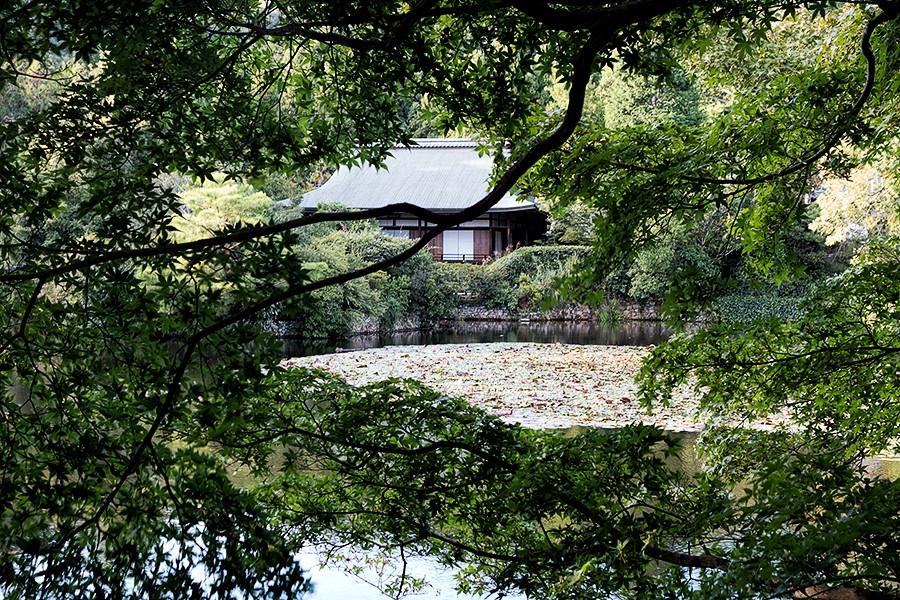 Ryōan-ji 3