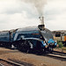 Sir Nigel Gresley  at Coalville Open Day 1988