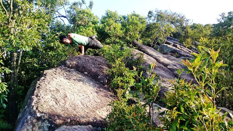 TAIPEI-bush walking-台北郊山健行-內湖金面山剪刀石-17度C隨拍 (16)