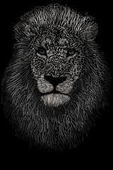 lionwords black n whit