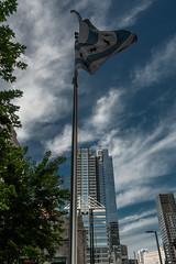 Nashville-Chircago-2018-757.jpg