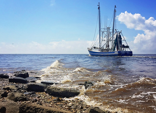 Princess Kelly shrimp boat heads out from Bayou La Batre Alabama