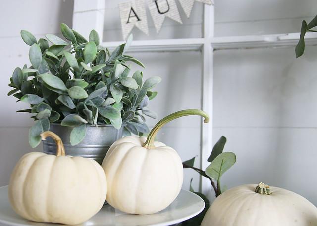 Mini White Pumpkins Decor