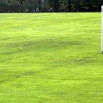 Green goal at Ashton Park