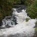 River Rothay, Ambleside  2