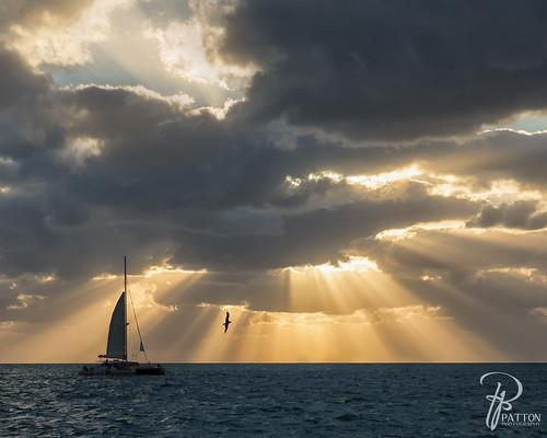 fall sunset key west florida ocean caribbean sea water bird boat sail sailing boating light rays patton photography sky clouds atlantic keys