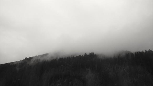 Carpathian fog