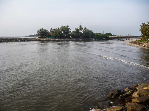 the estuary at Calicut