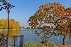 Lac d'Enghien