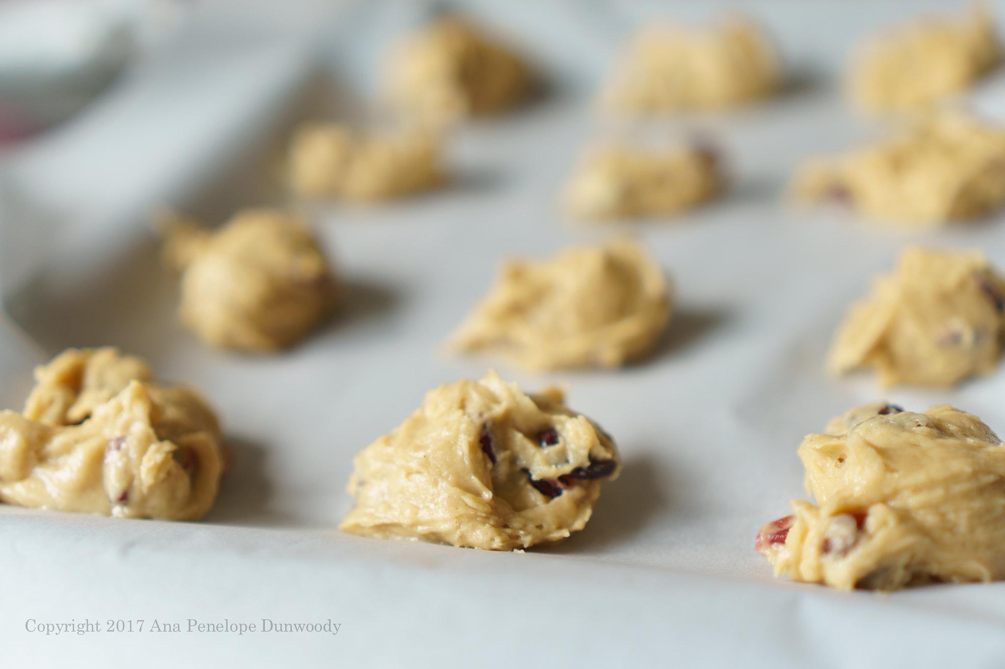 Hermit Cookie Dough
