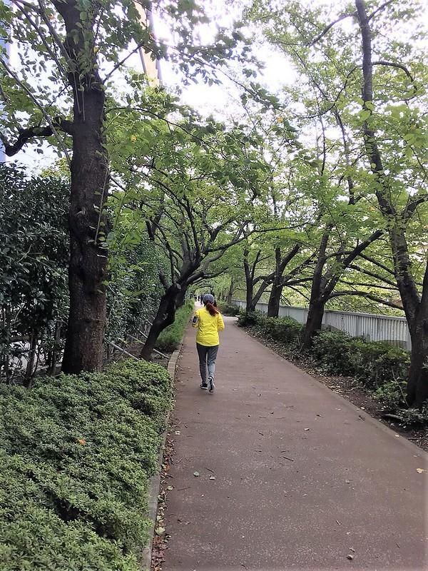 東京早上去跑步