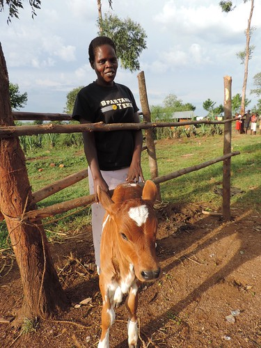 Selvin Odhiambo stands proud next to her new calf.